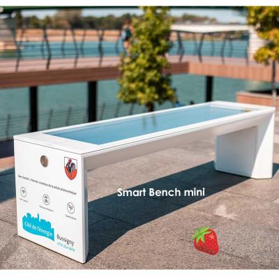 Smart Bench mini - ideális régi padok cseréjéhez, bevásárlóközpontokhoz, egyetemekhez, kiskereskedelmi parkokhoz.